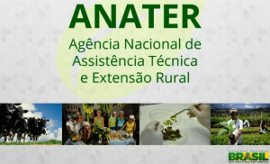 anater1